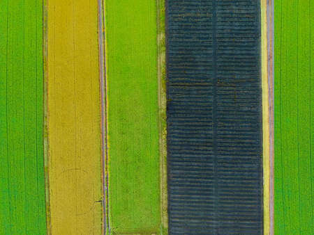 Aerial top view photo from flying drone of a land with sown green fields