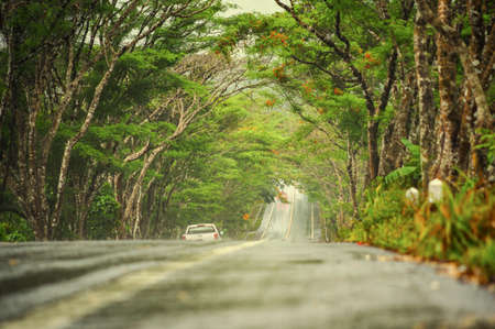Wet road in countryside with nature on green mountain after rainy.