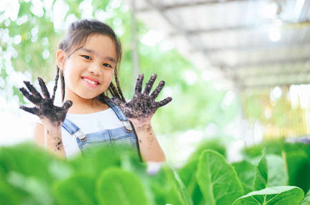 Happy cute girl with a raised hands couple picking vegetable from backyard garden 版權商用圖片