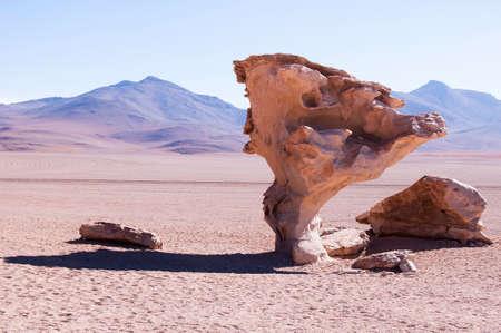 uyuni: Stone tree of Uyuni Salt