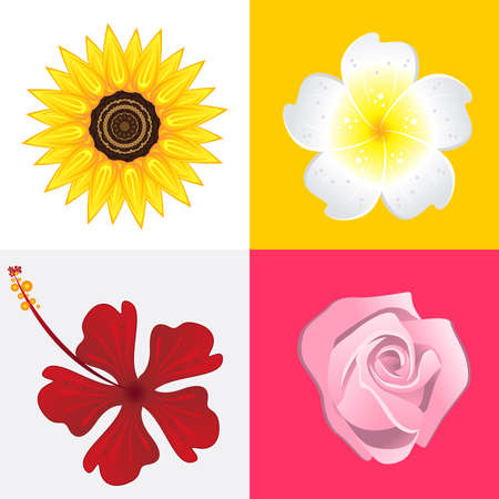 Blossom Of Rose, Jasmine, Sunflower And Hibiscus Flower. Stock Vector - 18287600