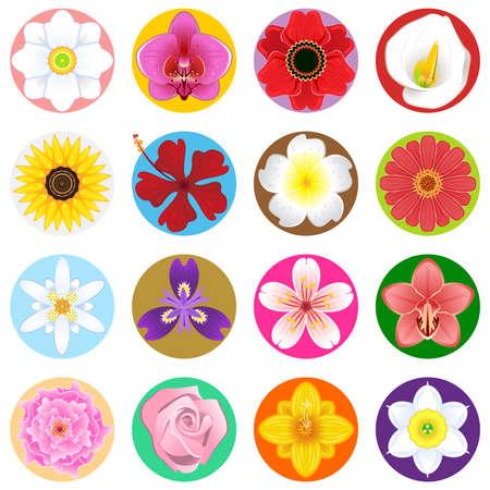 ikebana: Flower Collection Set
