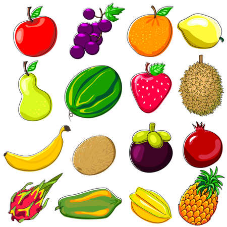 Various Fresh Tropical Fruits Doodle Style Illustration Illustration