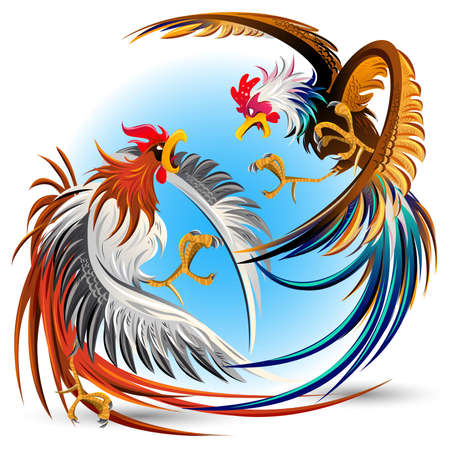 rooster fighting Иллюстрация