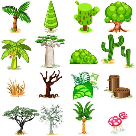 zypresse: Baum Vektor-Illustration Collection Pack Illustration