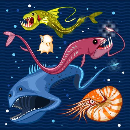 dragonfish: Fish Of The Deep Blue Sea Collection Set 02  Illustration of monsters of the deep blue sea collection set 02 . Contains viperfish, dragonfish, gulpereel, nautilus  dumbo squid Illustration