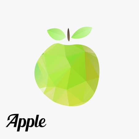 fresh fruit apple colorful outline modern triangle texture. vector illustration Vector