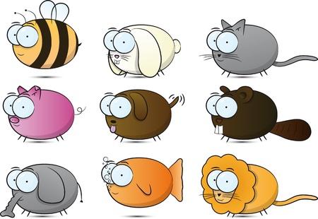 fisch: Animals