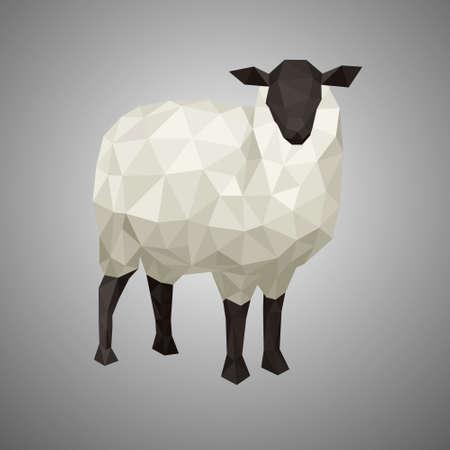 Laag poly schapen. Vectorillustratie in veelhoekige stijl. Bosdier op witte achtergrond.