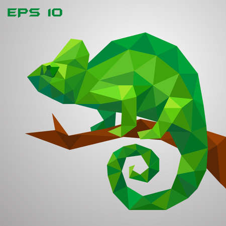 A green chameleon is sitting on a branch and looking. Thoughtful and lazy wild life. Low poly reptile on a white background. Illustration. EPS 10.