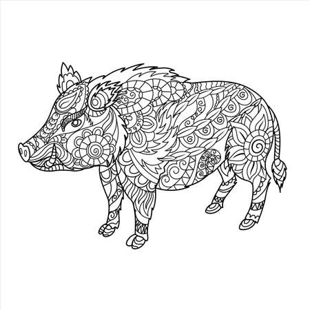 Wild boar coloring book. Forest animal in doodle style. Anti-stress coloring for adult. Zentangle picture, illustration. EPS 10.