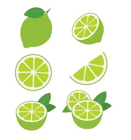 Limetten-Früchte-Sammlung von Vektorillustrationen lokalisiert auf weißem ENV 10 Vektorgrafik