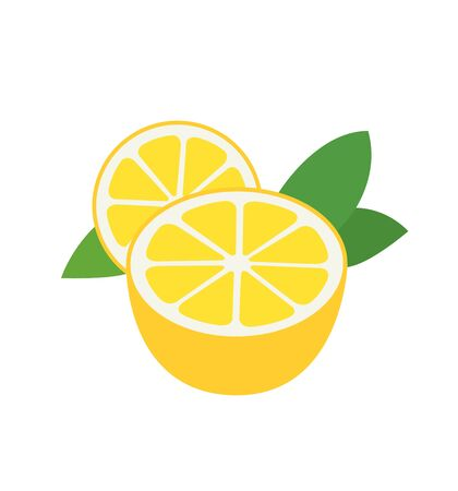 Fresh lemon fruits vector illustrations isolated on white eps 10  イラスト・ベクター素材