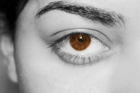 Beautiful brown eyes of mexican girl photo