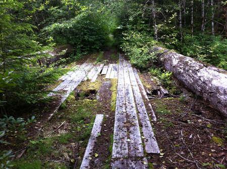 logging: Old logging bridge