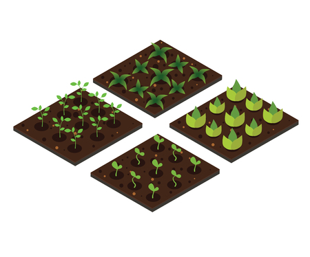 Garden in spring. Isometric icon set. Vector illustration.