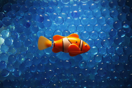 Fish at the chemical sea. Science, Ecology, molecular chemistry and genetic engineering. Stock Photo