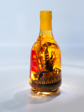 abstract liquor: Vietnamese traditional liquor with the pickled snake and scorpion in a bottle on abstract background Stock Photo