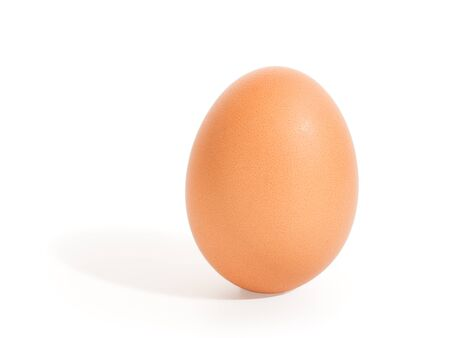 Brown standing hen egg with it`s shadow. Isolated on white, clipping path included
