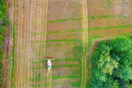Combine harvester in the field. Top aerial view