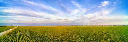 Wind power plant in the green field against cloudy sky at sunset. Wide panoramic view Stok Fotoğraf