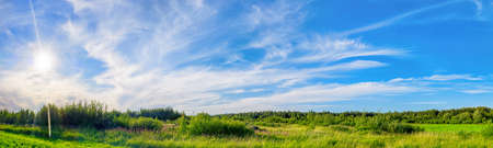 Bright green landscape with meadow, forest, and dramatic sky at sunny day. Ultra wide large hdr panoramic view 版權商用圖片
