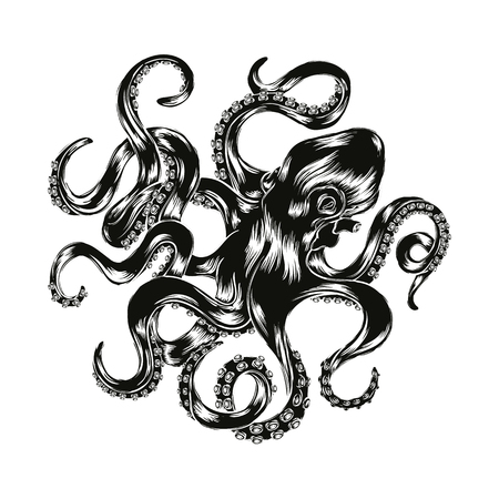 Octopus  illustration. Engraved octopus silhouette isolated