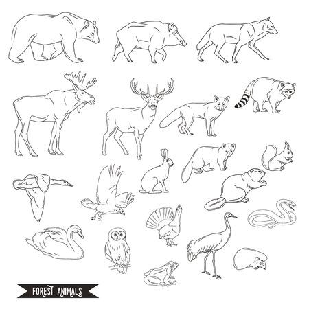 Dieren in het bos silhouetten vintage. illustratie in lijntekeningen geïsoleerd Stock Illustratie