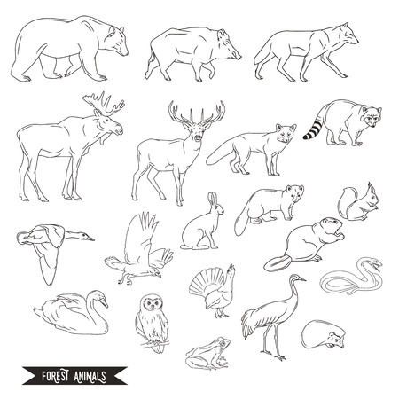 Forest animals silhouettes vintage. illustration in line art isolated Illustration