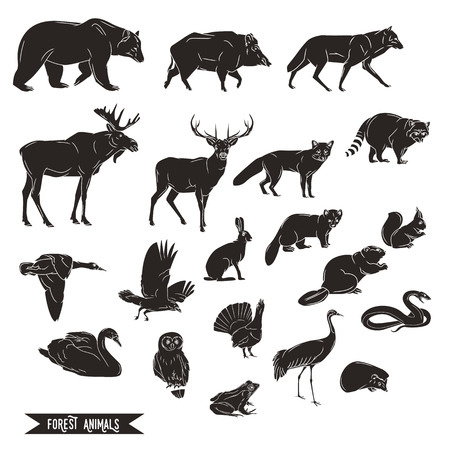 Forest animals silhouettes vintage. Vector illustration in line art isolated
