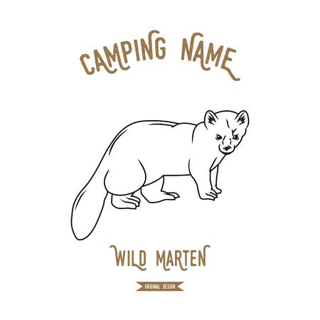 marten: Forest marten vector illustration. European animals silhouettes vintage. Illustration