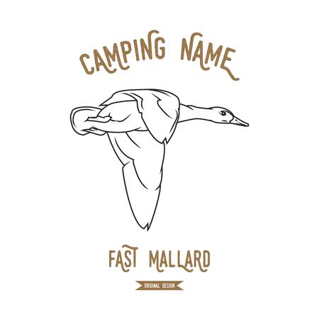 mallard: Wild duck. Mallard vector illustration. European animals silhouettes vintage.