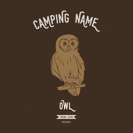 owl illustration: Wild owl vector illustration. Illustration