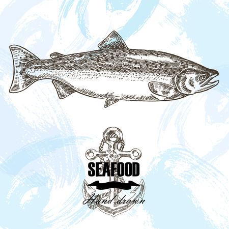 salmon fish: Vintage seafood sketch background. Hand drawn salmon fish vector illustration. Illustration