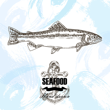 brown trout: Vintage seafood sketch background. Hand drawn wild trout fish vector illustration.