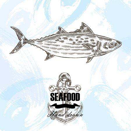 mackerel: Vintage seafood sketch background. Hand drawn bonito fish vector illustration.