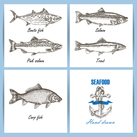 temlate: Seafood temlate design. Engraved vector fish set. Hand drawn fish banner. Illustration