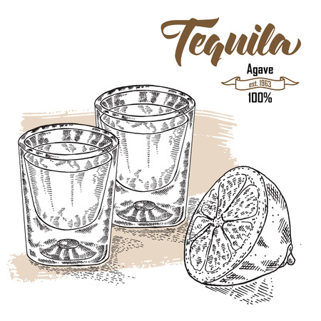 shot: Shot of tequila drink. Hand drawn two glasses of tequila. Engraving style. Vector illustration
