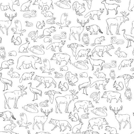 Dibujado a mano animales del bosque. Animales de fondo transparente. Ilustración del vector en la línea arte aislado