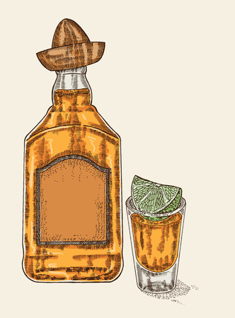 bourbon whisky: Tequila in bottle and glass. Hand drawn tequilan drink vector illustration. Sketch retro style Illustration