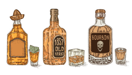 Three bottles with strong alcohol. Hand drawn whiskey and tequila. Vector Illustration