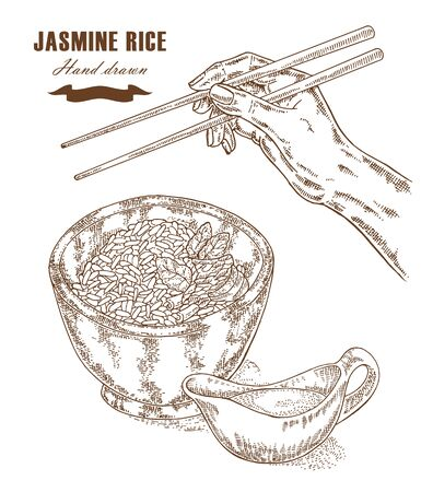 jasmine rice: Thai jasmine rice in a bowl. Hand with chopsticks. Vector illustration in sketch style