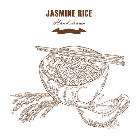 Thai jasmine rice in a bowl. Rice plant hand drawn. Vector illustration in sketch style Illustration