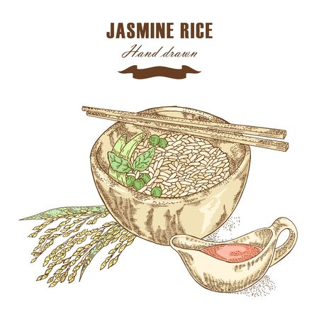 thai style: Thai jasmine rice in a bowl. Rice plant hand drawn. Vector illustration in sketch style Illustration
