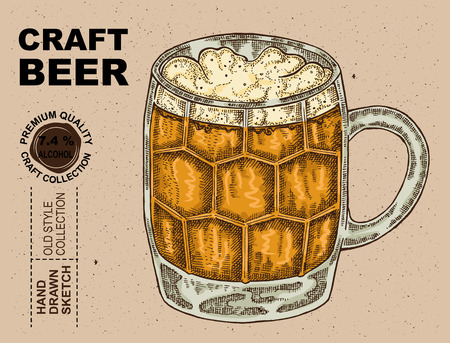 Hand drawn glass with beer. Alcohol drink sketch vector illustration Illustration
