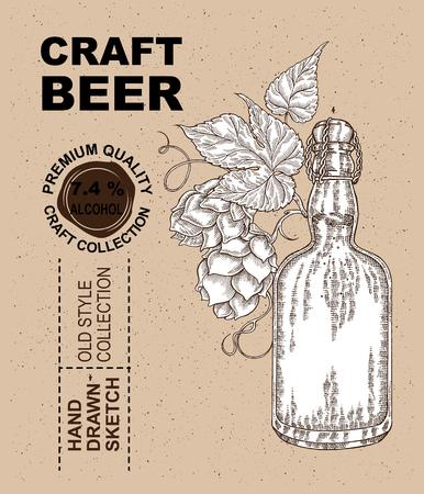 cereal bar: Hand drawn beer bottle with hops plant. Alcohol drink sketch vector illustration