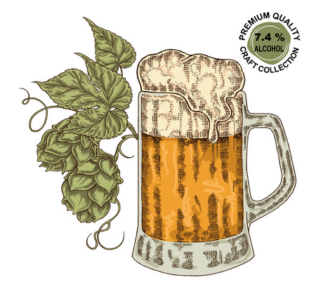 cereal bar: Hand drawn beer glass with hops plant. Alcohol drink sketch vector illustration