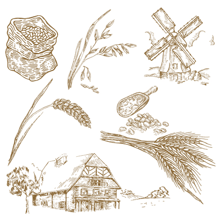 grind: Farm house, windmill, wheat, oats in sketch style. Vector cereals set Illustration