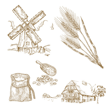 Hand drawn illustration windmill, wheat