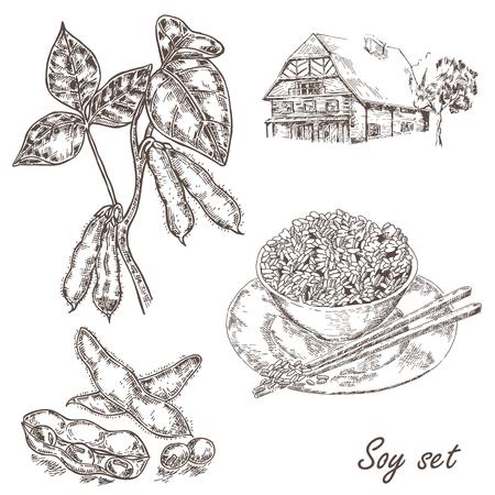 Hand drawn plante de soja, le soja, le riz et la vieille maison. Vector illustration Vecteurs